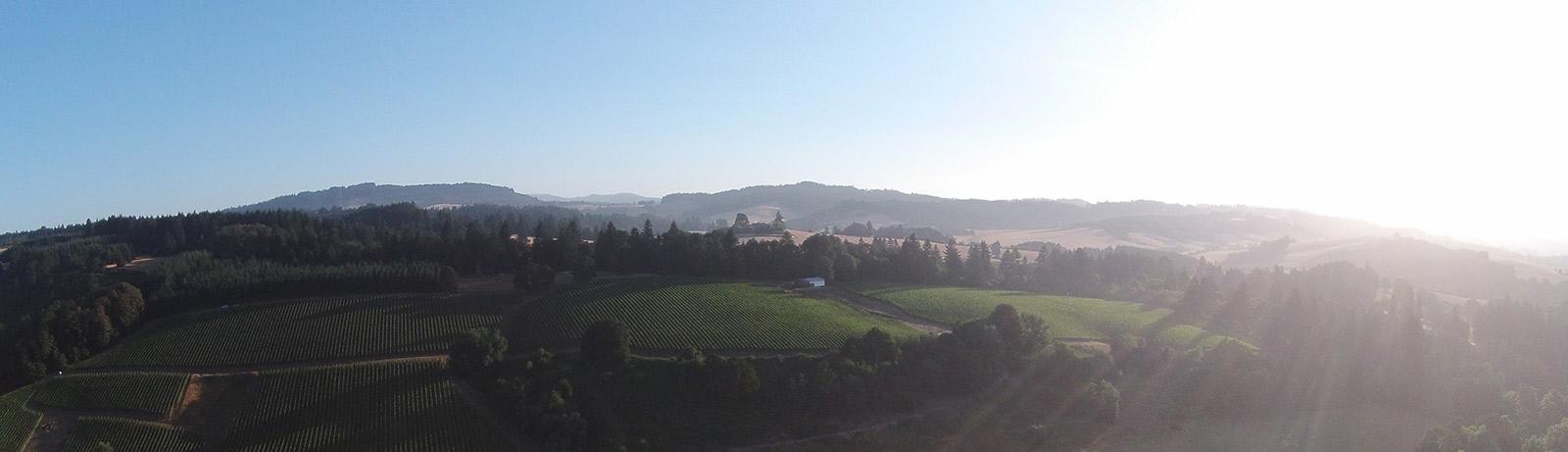 Oregon Wine Country by Brian Richardson, Vinbound Marketing